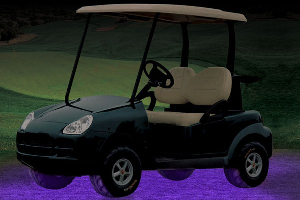 Plasmaglow 10839 Black Light Flexible Led Golf Cart Kit